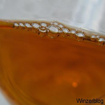 nikolauswein-copyright-winzerblog1.jpg